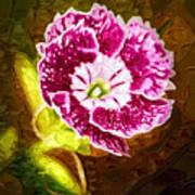 Flower Pop 2 Art Print