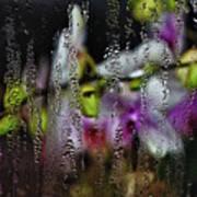 Flower Shop Window 1 Art Print
