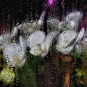 Flower Shop Window 3 Art Print
