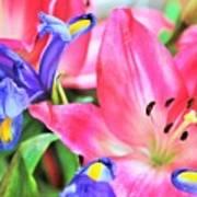 Flower Soft  Art Print