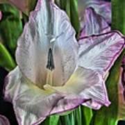 Flower Still Life Hdr 2 Art Print