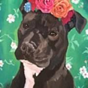 Flower The Pitbull Art Print
