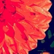 Flower5 Art Print
