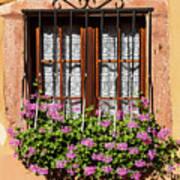 Flowered Window # II Art Print