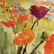 Poppy Hill Art Print