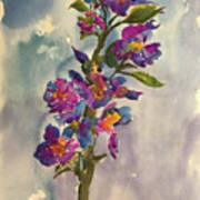 She Blooms Art Print