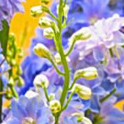 Flowers 39 Art Print