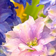 Flowers 42 Art Print
