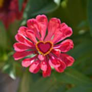 Flower's Heart Art Print