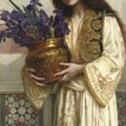 Flowers Of The Levant  Art Print