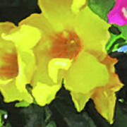 Flowers On Deck Art Print