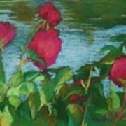 Flowers On Water Art Print