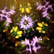 Flowers Thru Kaleidiscope Art Print