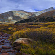 Flowing From Bierstadt Art Print by Barbara Schultheis