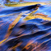 Flowing Water In Fall Art Print