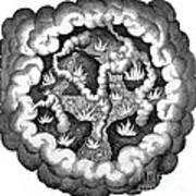 Fludds Primordial Fires, 1617 Art Print