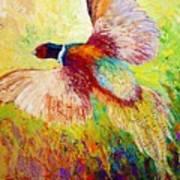 Flushed - Pheasant Art Print