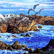 Flying High Over California Art Print
