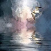 Flying Towards The Light Art Print