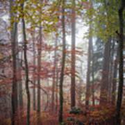 Fog In Autumn Forest Art Print