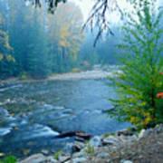 Fog In The Wenatchee Forest Art Print