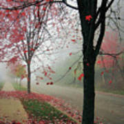 Fog On A November Morning Art Print