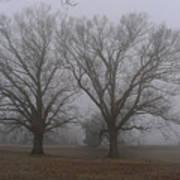 Fog On The Yorktown Battlefield Art Print