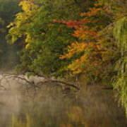 Fog Rolls Into Fall Art Print