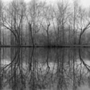 Foggy Lagoon Reflection #3 Art Print