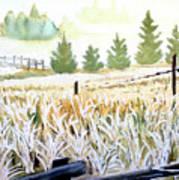 Foggy Field Art Print