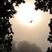 Foggy Heron Flight Art Print