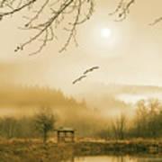 Foggy Lake And Three Couple Of Birds Art Print