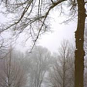 Foggy Morning Landscape 10 Art Print