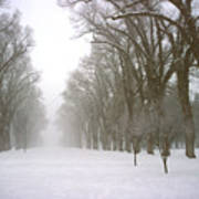 Foggy Morning Landscape 4 Art Print
