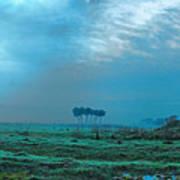Foggy Morning Pasture Art Print