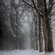 Foggy Vermont Winter Path Art Print