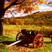 Foliage And Old Wagon Art Print