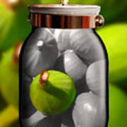 Food Fruit Figs 1 Art Print