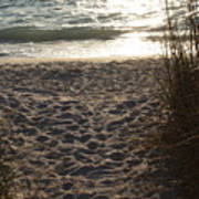 Footprints In The Dunes Art Print