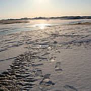 Footsteps In Frozen Landscape Art Print