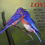 For Love Of Bluebirds And Scripture Art Print