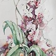 For The Love Of Orchids Art Print