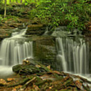 Forbes State Forest Twin Falls Art Print