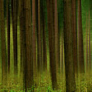 Forest Abstract01 Art Print