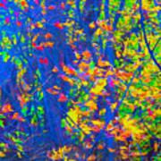 Forest Foliage Art Art Print