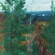 Forest Landscape Art Print