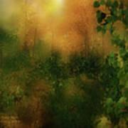 Forest Moods Art Print
