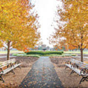 Forest Park Benches Art Print