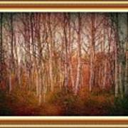 Forest Scene. L A With Decorative Ornate Printed Frame. Art Print