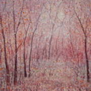 Forest Stillness. Art Print